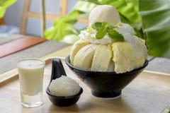 Durian di Bingsu con il gelato del durian ed il durian Immagini Stock Libere da Diritti