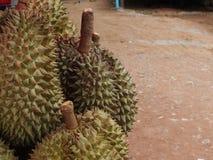 Durian, die in vele aantallen voor verkoop wordt samengebracht royalty-vrije stock afbeeldingen
