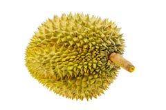 Durian do pomar para a exportação ao mercado ou ao supermercado O rei do fruto é durian e assim cheiro durian do favorito alguns  fotografia de stock