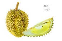 Durian do pomar para a exportação ao mercado ou ao supermercado O rei do fruto é durian e assim cheiro durian do favorito alguns  imagem de stock royalty free