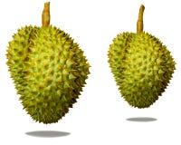 Durian, Durio-zibethinus linn Royalty-vrije Stock Afbeelding