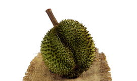 Durian el rey de frutas Foto de archivo libre de regalías