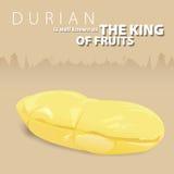 Durian el rey de frutas tailandesas Imágenes de archivo libres de regalías