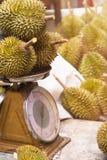 Durian en escalas en el rey popular del mercado de la fruta para el producto de la exportación Fotos de archivo