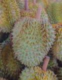Durian en mercado fresco Imagen de archivo libre de regalías