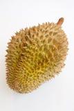 Durian entier simple sur le fond blanc Photos libres de droits