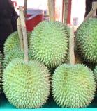 Durian - et x22 ; Leaf& d'or Long-coupé la queue x22 ; - Fruit saisonnier - cher Photo libre de droits