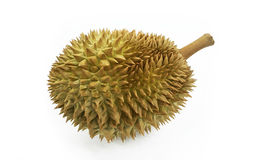 Durian. A famous fruit from Thailand. Or as know as the king of fruit Royalty Free Stock Photos