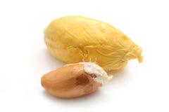 Durian Flesh Stock Photography