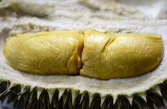 Durian Flesh and Color Royalty Free Stock Images