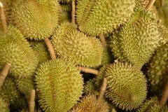 Durian från Thailand Royaltyfri Bild