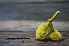 Durian från Thailand royaltyfri fotografi