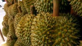 Durian fresco Imagens de Stock