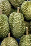 Durian fresh fruit,sweet from East asian,Thailand, Royalty Free Stock Image