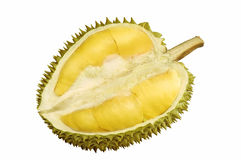 Durian Fruit Stock Images