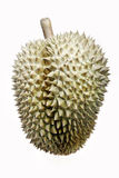 Durian fruit Stock Photography