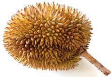 Durian Fruit. Tropical fruit - Durian isolated on white background Stock Photo