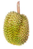 Durian fruit isolate Stock Images