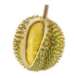 Durian fruit isolated Stock Photography