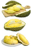 Durian fruit isolated on a white background durain king fruit of Thailand. Photo of durian fruit isolated on a white background durain is king of fruit in Royalty Free Stock Photography
