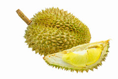 Durian fruit isolated on white background, Fresh fruit from orchard, King of fruit from Thailand Royalty Free Stock Image