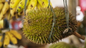 Durian fruit in the market stock footage