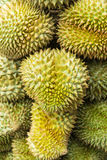 Durian , fruit in the market of thailand Stock Images