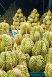 Durian , fruit in the market of thailand. Durian , A fruit in the market of thailand Stock Photography