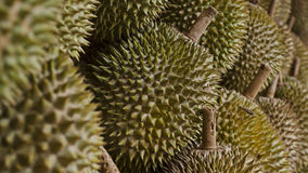Durian fruit outside Stock Photography
