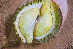 Durian fruit piece on a wooden plate. Durian king of fruit Royalty Free Stock Photo