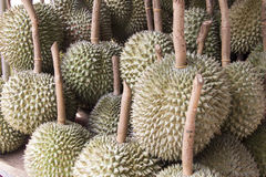 Durian fruit Royalty Free Stock Photos