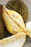 Durian fruit ripe for eaten Royalty Free Stock Image