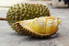 Durian fruit ripe for eaten Royalty Free Stock Photo