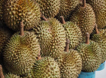 Durian fruit sale in farm market. Thailand Food background Stock Images