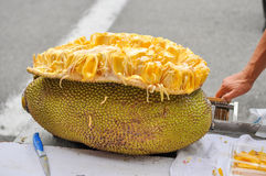 Durian fruit on a table Royalty Free Stock Photography