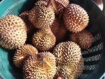 durian fruit Royalty Free Stock Photos
