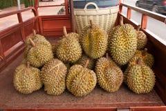 Durian fruit, Thai Royalty Free Stock Photo