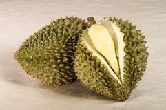 Durian fruit tropical Stock Photography