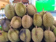 Durian. Fruit in tropical zone southeast asia Stock Images