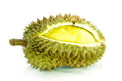 Durian fruit on white background Stock Images