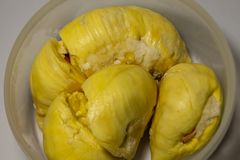 Durian fruits when ripe are yellow, sweet, fruit of the people at Thailand. royalty free stock photo