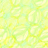 Durian fruits seamless pattern. Green yellow tropical fruits, cut in half and whole fruit posted diagonally Royalty Free Stock Images