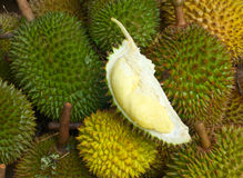 Durian fruits, thailand Stock Image