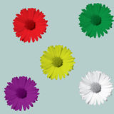 Daisies flowers. Full color Daisies flowers on summer stock illustration
