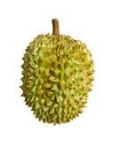 Durian gatunki Monthong Tajlandia odizolowywający na białym tle fotografia stock