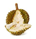 Durian. Giant Tropical Fruit. Royalty Free Stock Photography