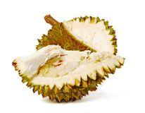 Durian. Giant Tropical Fruit. Stock Photos