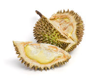 Durian. Giant Tropical Fruit. stock image