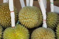 Durian i marknad för ny frukt royaltyfria bilder