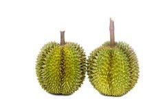 Durian i precedenti di bianco di re Of Fruit On Fotografie Stock